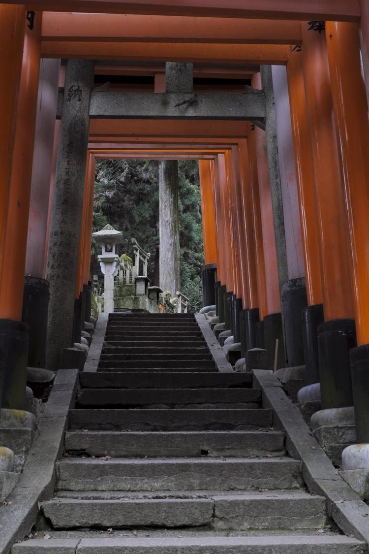 Fushimi Inari Taisha steps