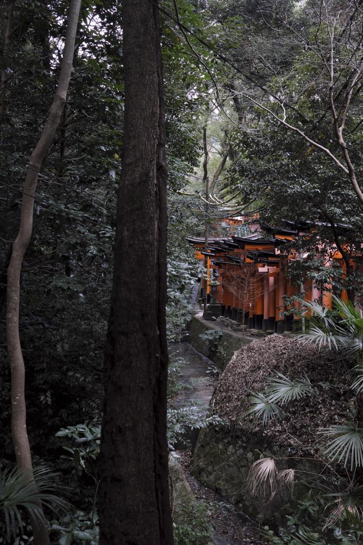 Fushimi Inari Taisha wood