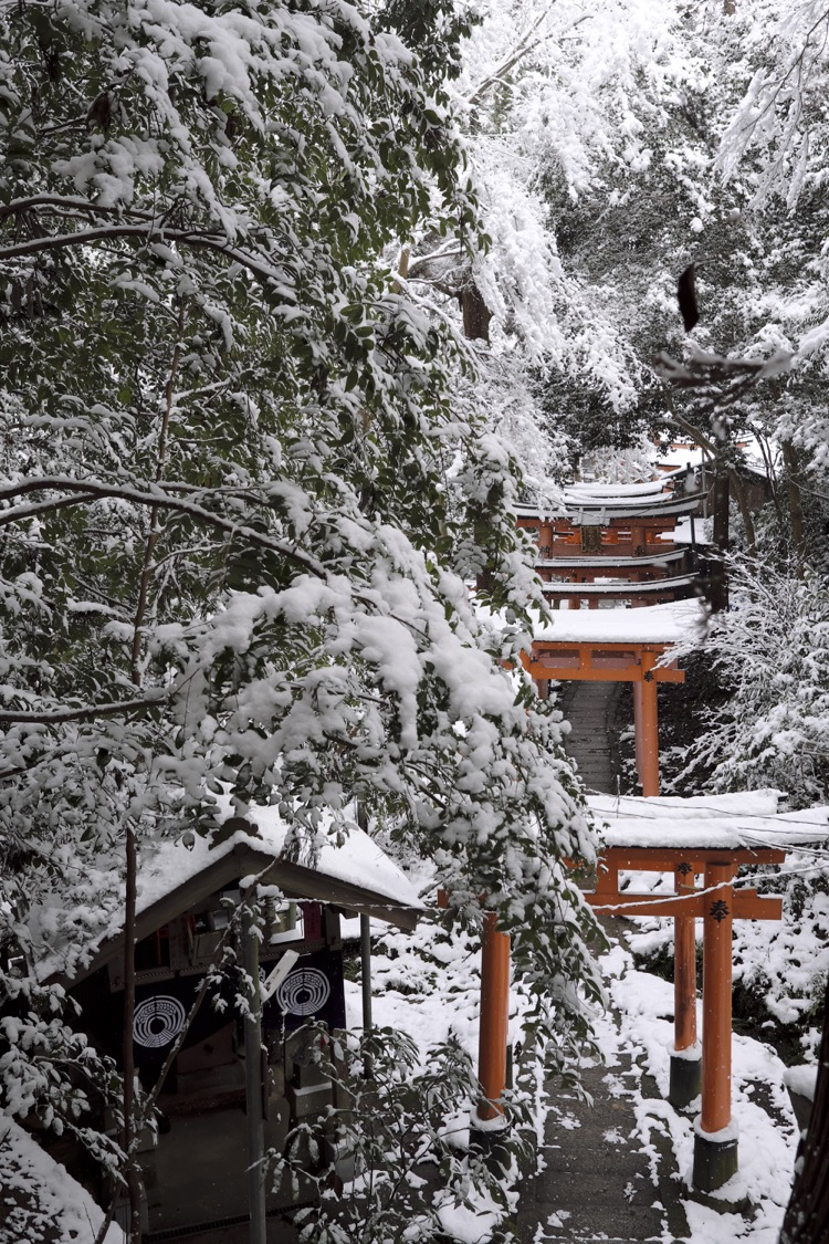 Fushimi Inari Taisha torii snow wood
