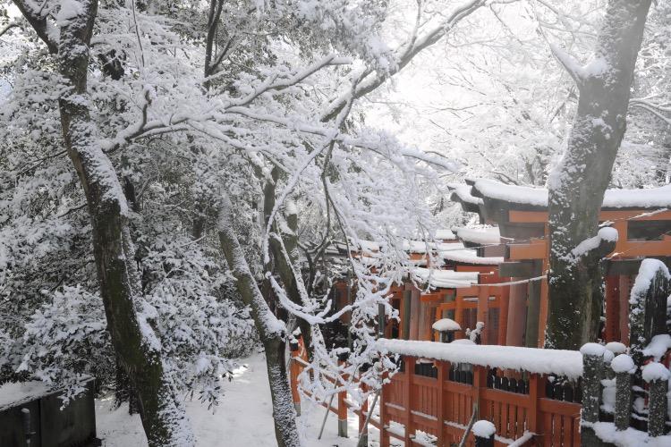 Fushimi Inari Taisha torii snow wood peak