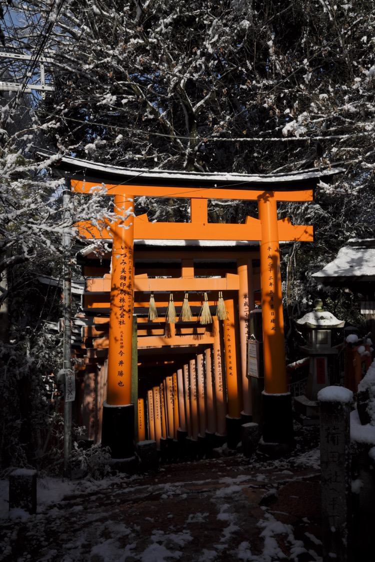 Fushimi Inari Taisha torii down